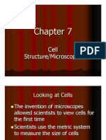 chapter 7 cell features