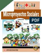 Microproyectos Sociales