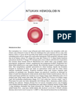 PEMBENTUKAN HEMOGLOBIN.pdf