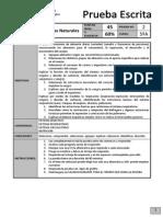 CSN5_PR2_Sistemasynuytricion