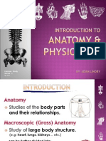 Introduction to Human Anatomy - Human Body - W1 V2003