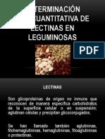 Determinación semicuantitativa de lectinas en leguminosas