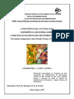A Influência da Cultura e da Experiência Decisória sobre a Percepção do processo decisório individual  Um estudo comparativo entre Brasil, França e Estados Unidos