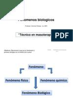 Proceso Biologico y Organizacion Biologica PDF