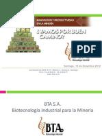 20121214105734_Presentación BTA Cochilco