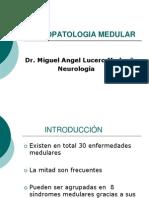 neuropatologiadelamedulaespinal-110312161157-phpapp01