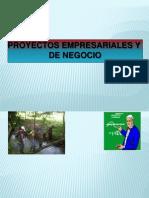 Exposicion Proyectos Innovadores PDF...