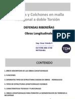 DEFENSAS RIBEREÑAS  C. Oviedo