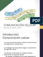 2.1 Comunicacion Celular