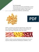 Productos Agrícolas de Guatemala
