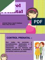 controlprenatalg2-130625002414-phpapp01
