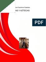 Incas y Aztecas