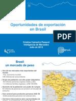 Oportunidades de exportación brasil