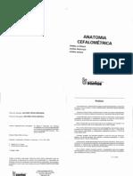 53016142 p e Vion Anatomia Cefalometrica.pdf Unknown