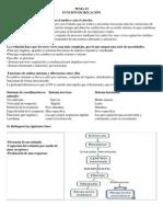 TEMA3 FUNCION DE RELACION.docx