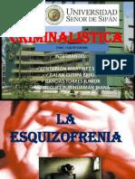 Esquizofrenia en Diapositivas