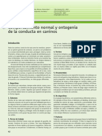 34_ontogenia_caninos