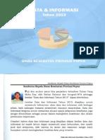 Data Dan Informasi Kesehatan Papua 2013