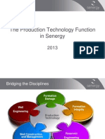 The Production Technology Function in Senergy - 2013