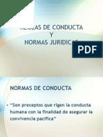 Reglas de Conducta y Normas Juridicas Extra