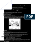 PART 1 Brain Varcularisation and Ventricular System