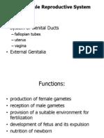 Female Reproductive Histology