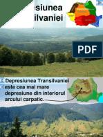 Depresiunea Transilvaniei Lectie Si Exercitii