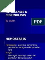 Hemostasis Ut Kbk