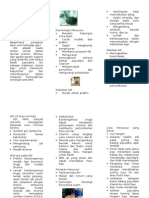 Leaflet Sap II