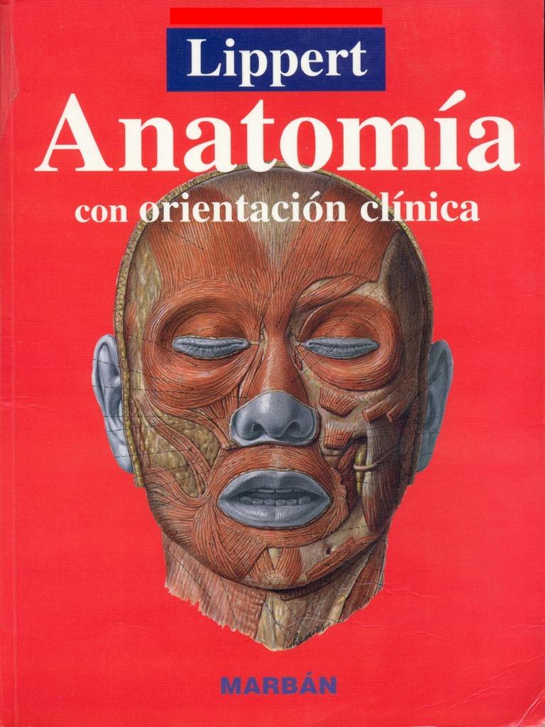 Anatomia con Orientación Clinica - H. Lippert - 4ta Ed - 2005 - (Marban)