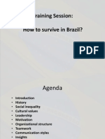 Cross Cultural Insights Brazil