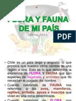 florayfaunadechile-130114194454-phpapp01