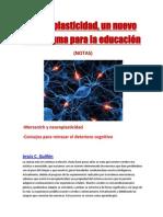 Neuroplasticidad (NOTAS)