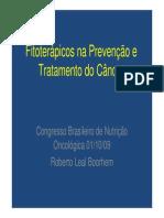 Fitoterapicos Prevencao Tratamento Cancer