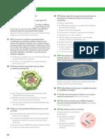 Páginas desdeLIBRO-2.pdf