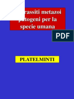 Platelminti-trematodi Lez5