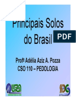 Principais Solos Do Brasil