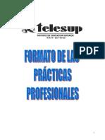 Formato Practicas Profesionales - Telesup
