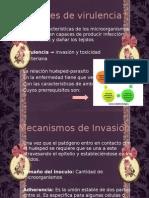 Factores de virulencia.pptx