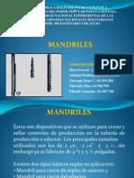 MANDRILES PRESENTACIÓN