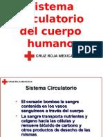 Sistema Circulatorio Cruz Roja Mexicana