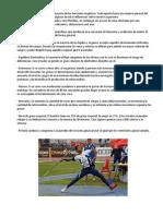 El Atletismo puede influir en la mayoría de las funciones orgánicas