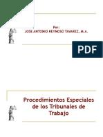 Procedimientos Especiales Ante Los Tribunales Laborales
