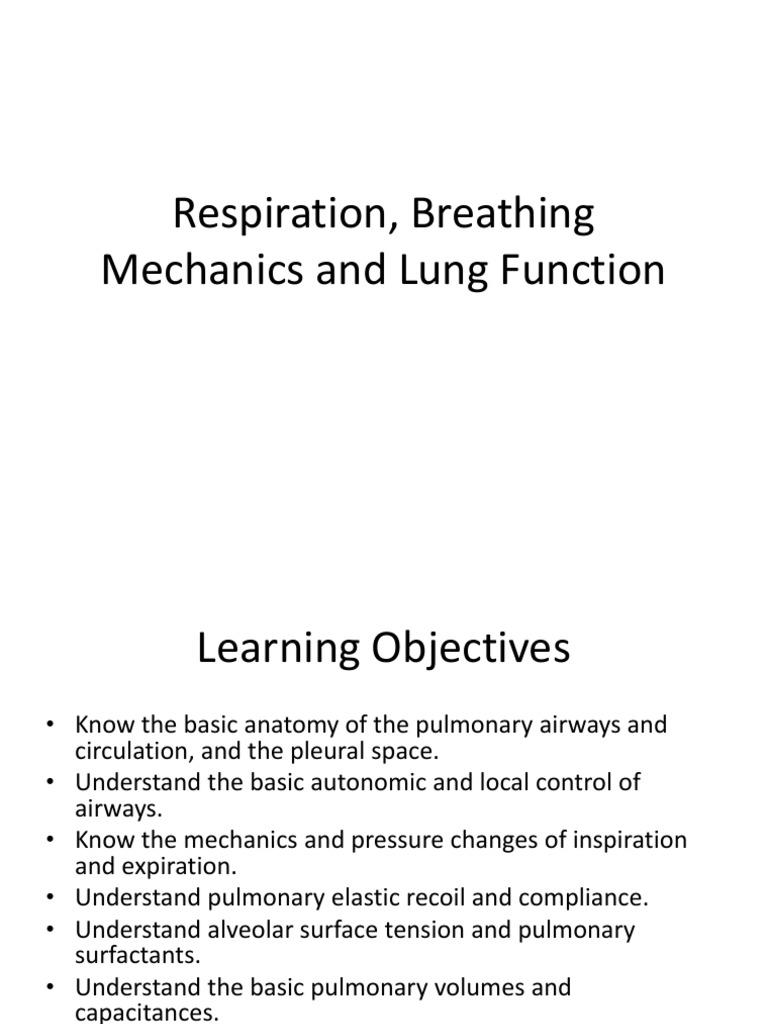 Respiration Lung Respiratory Tract