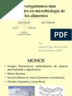 Microorganismos más importantes en microbiología de los alim