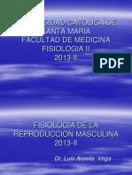 1. Fisiologia Del Sistema Reproductor Masculino 2009