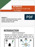 Group 11 (Biomass)