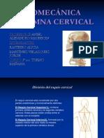 biomecnicacolumnacervical-100723225441-phpapp02