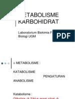 Carbohydrates II Metabolism