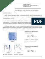 Equilibrio de Fases de 1 Componente Univ de Vigo